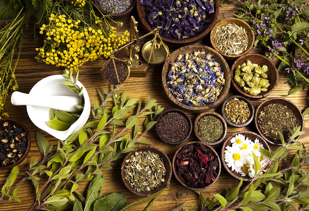 Top 10 Herbs You Need to Replenish Every Time