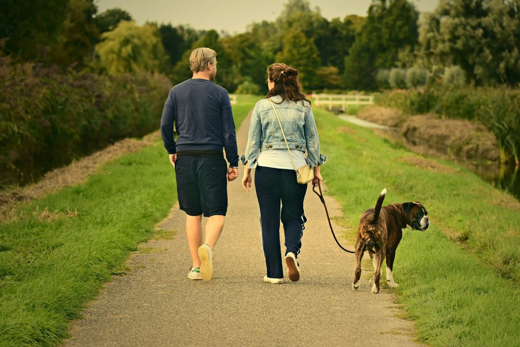 Top 10 Benefits of Walking Every Day